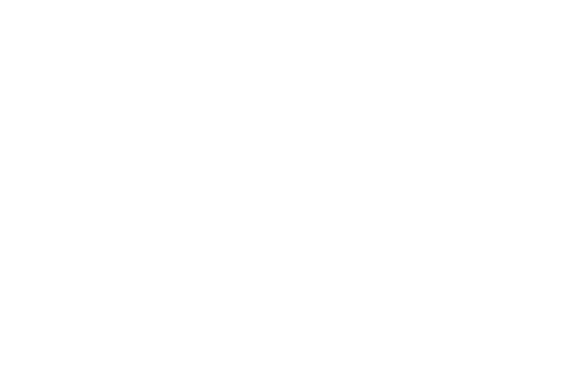 OFFICIAL SELECTION - Canadian International Faith  Family Film Festival - 2019 (1)